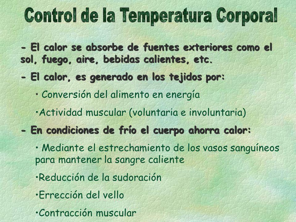 Control de la Temperatura Corporal
