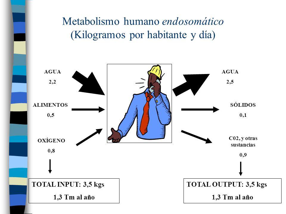 Metabolismo humano endosomático (Kilogramos por habitante y día)