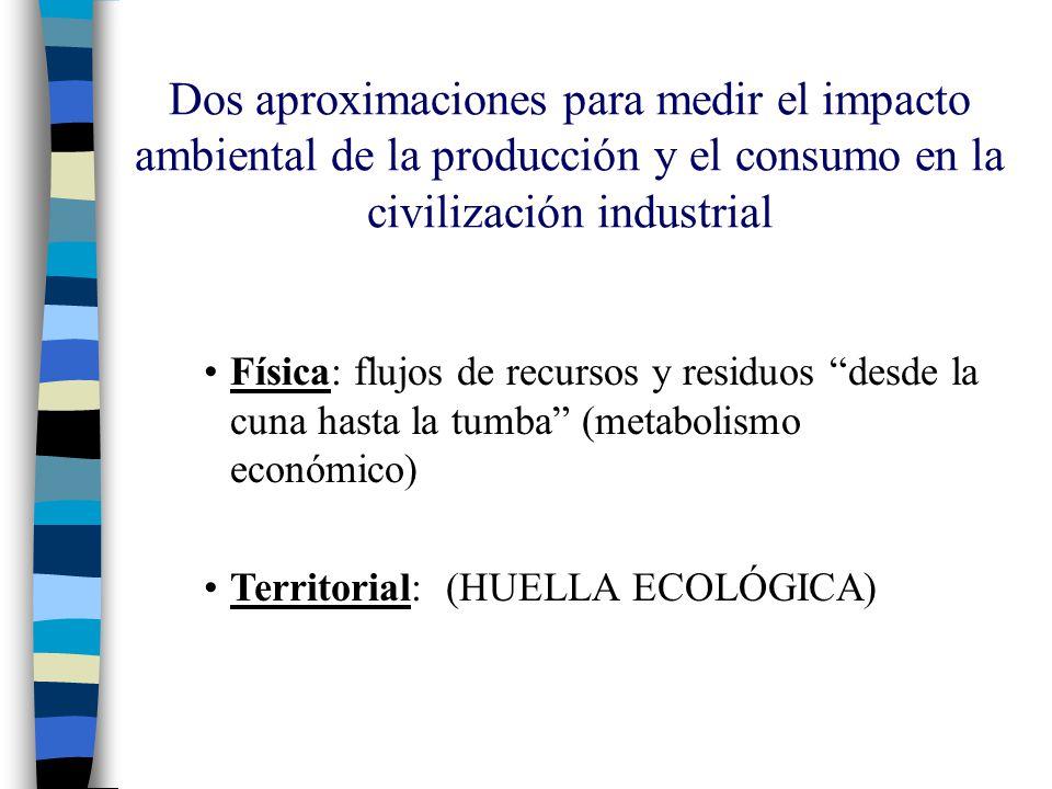 Dos aproximaciones para medir el impacto ambiental de la producción y el consumo en la civilización industrial