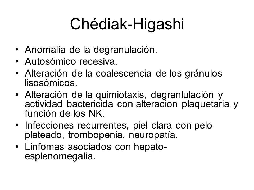 Chédiak-Higashi Anomalía de la degranulación. Autosómico recesiva.