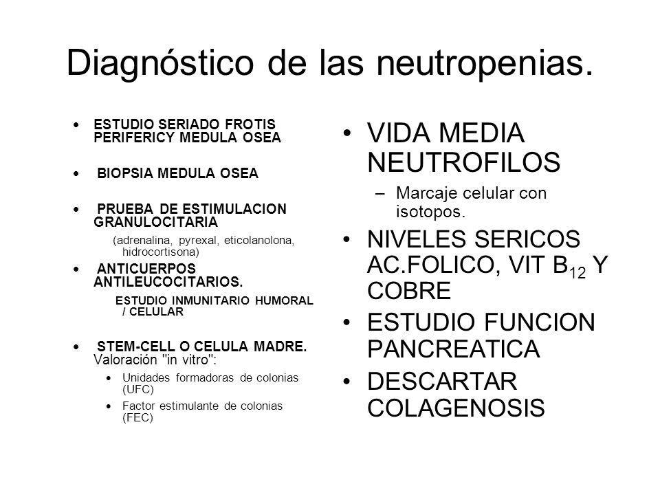 Diagnóstico de las neutropenias.
