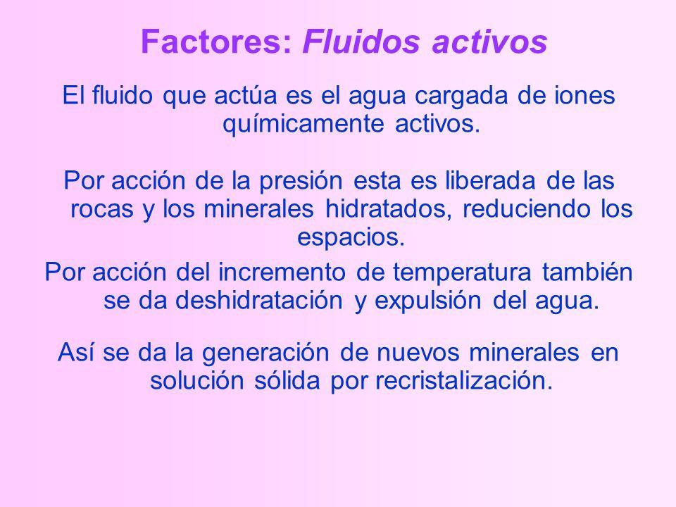 Factores: Fluidos activos