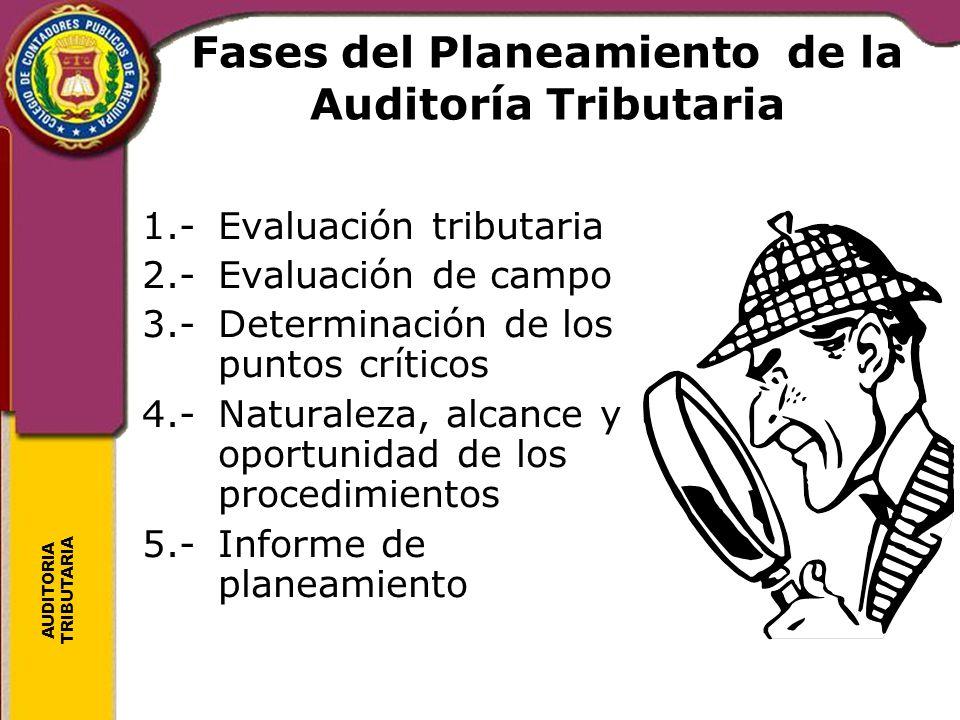 Fases del Planeamiento de la Auditoría Tributaria