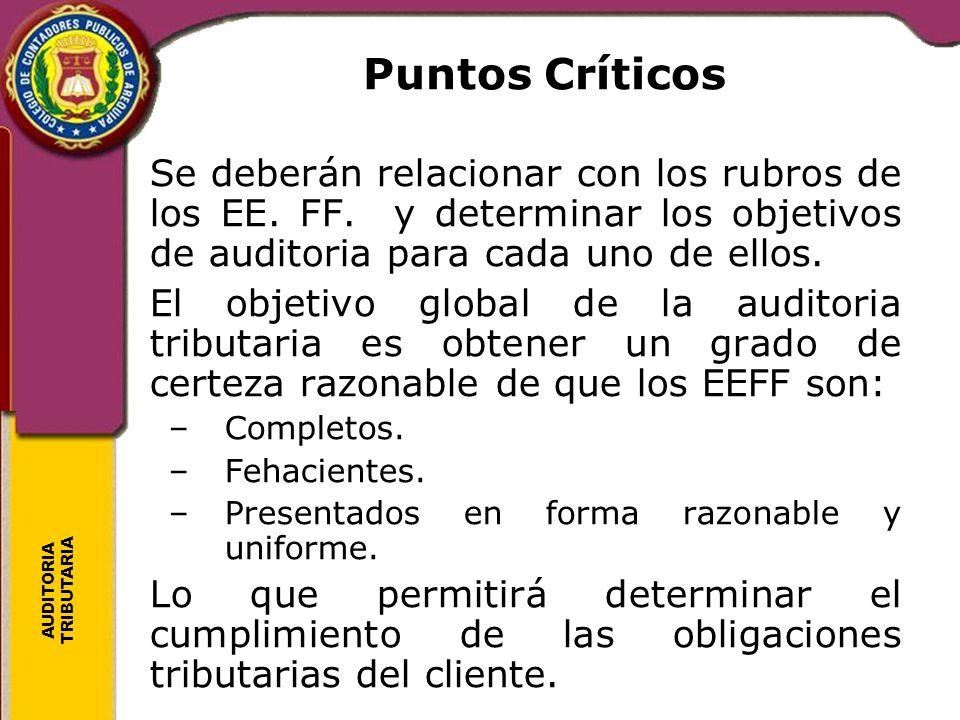 Puntos Críticos Se deberán relacionar con los rubros de los EE. FF. y determinar los objetivos de auditoria para cada uno de ellos.