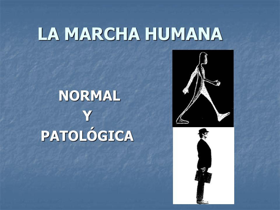 LA MARCHA HUMANA NORMAL Y PATOLÓGICA