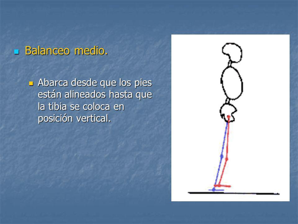 Balanceo medio. Abarca desde que los pies están alineados hasta que la tibia se coloca en posición vertical.
