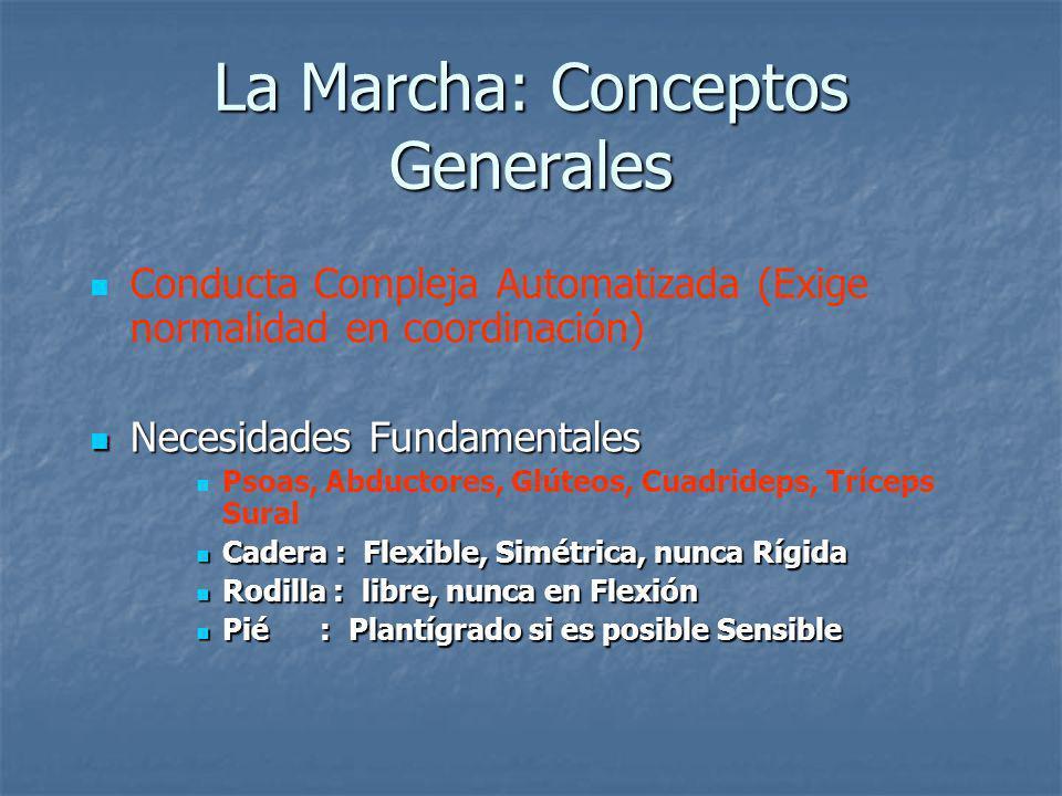 La Marcha: Conceptos Generales