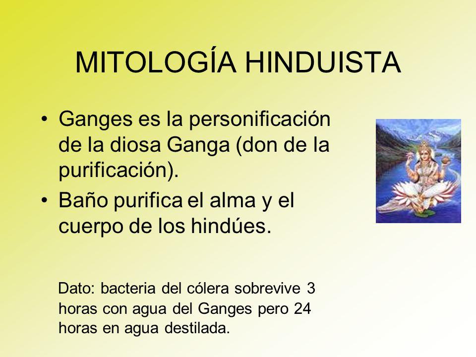 MITOLOGÍA HINDUISTA Ganges es la personificación de la diosa Ganga (don de la purificación). Baño purifica el alma y el cuerpo de los hindúes.