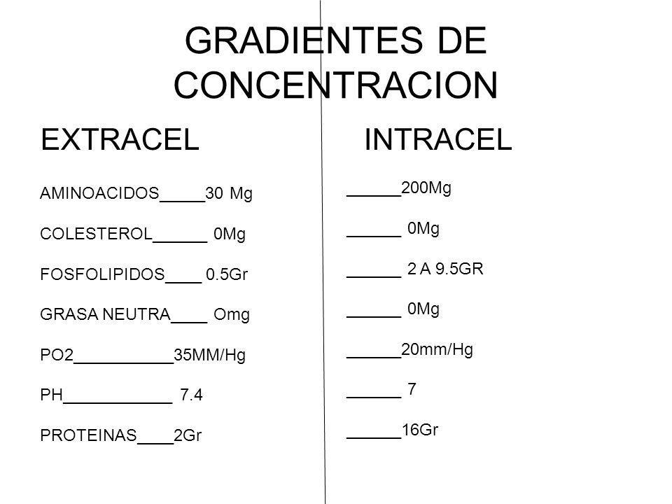 GRADIENTES DE CONCENTRACION
