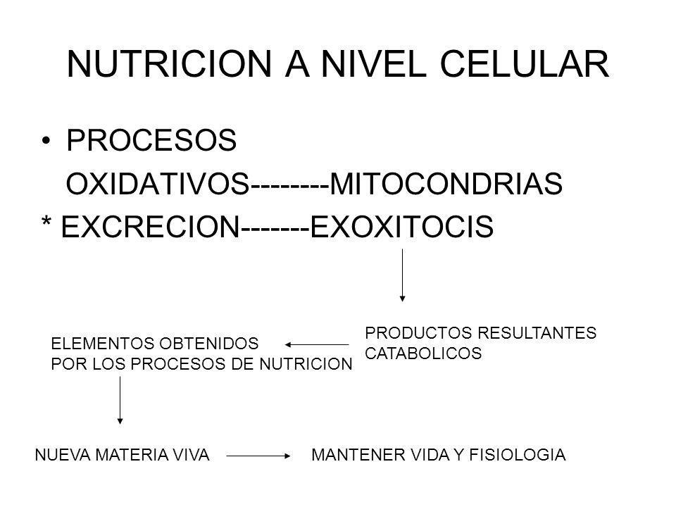 NUTRICION A NIVEL CELULAR