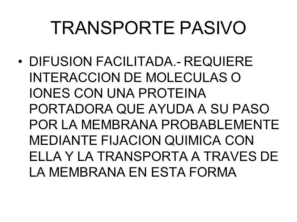 TRANSPORTE PASIVO