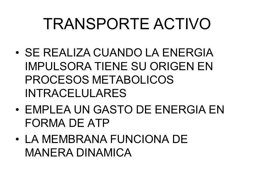 TRANSPORTE ACTIVO SE REALIZA CUANDO LA ENERGIA IMPULSORA TIENE SU ORIGEN EN PROCESOS METABOLICOS INTRACELULARES.