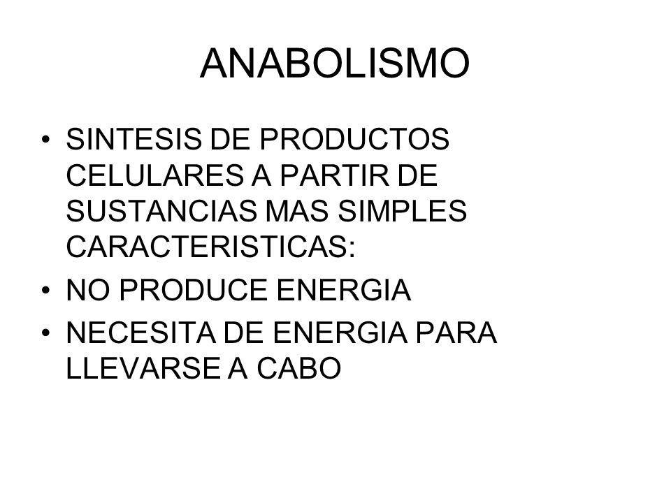 ANABOLISMO SINTESIS DE PRODUCTOS CELULARES A PARTIR DE SUSTANCIAS MAS SIMPLES CARACTERISTICAS: NO PRODUCE ENERGIA.
