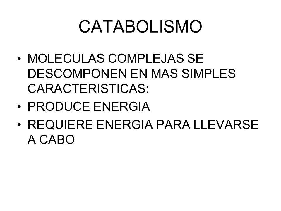 CATABOLISMO MOLECULAS COMPLEJAS SE DESCOMPONEN EN MAS SIMPLES CARACTERISTICAS: PRODUCE ENERGIA.