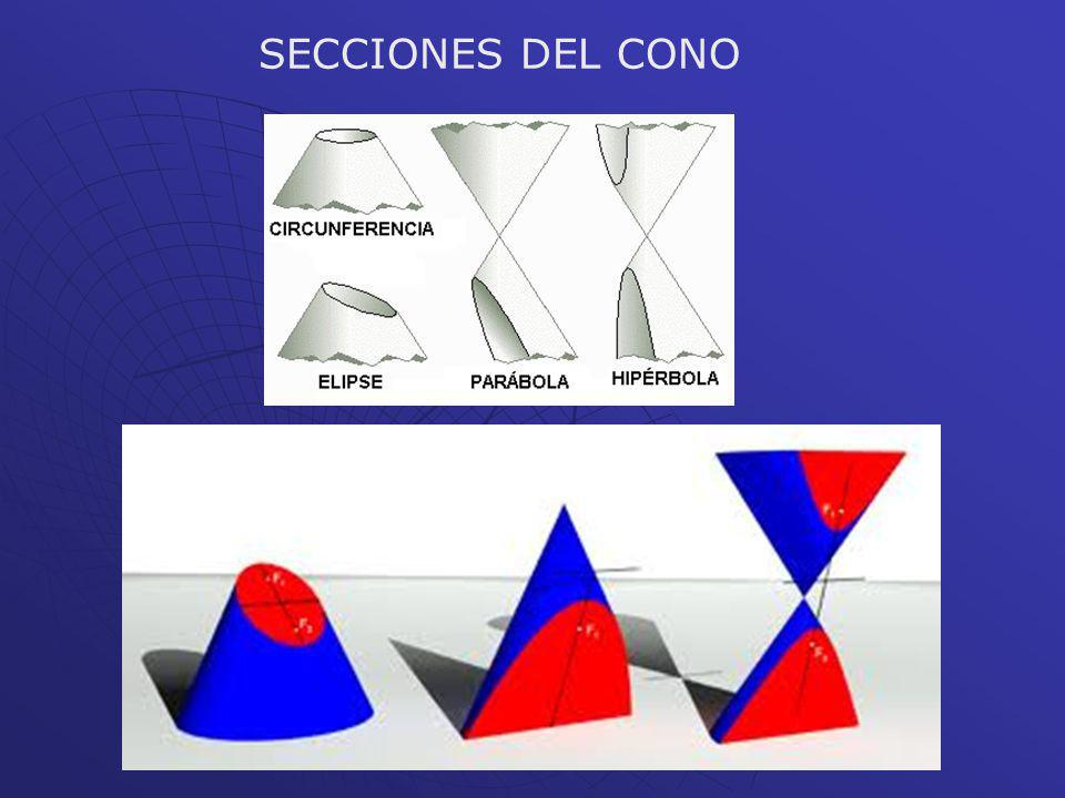 SECCIONES DEL CONO