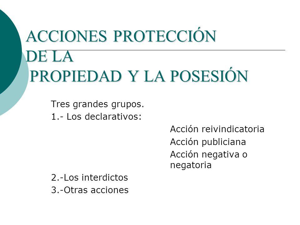ACCIONES PROTECCIÓN DE LA PROPIEDAD Y LA POSESIÓN