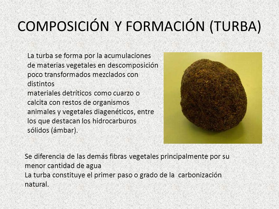 COMPOSICIÓN Y FORMACIÓN (TURBA)
