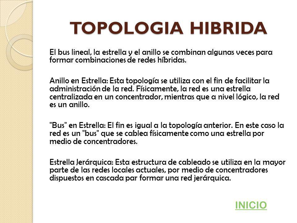 TOPOLOGIA HIBRIDA INICIO