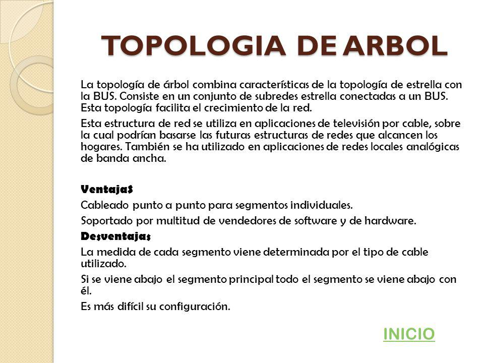TOPOLOGIA DE ARBOL INICIO