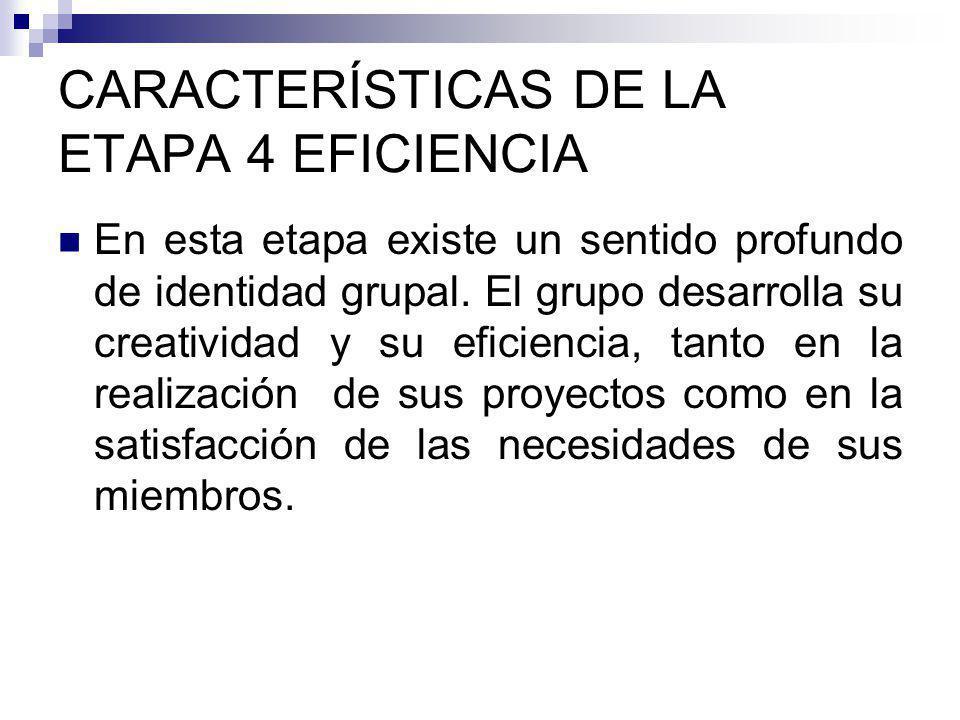 CARACTERÍSTICAS DE LA ETAPA 4 EFICIENCIA