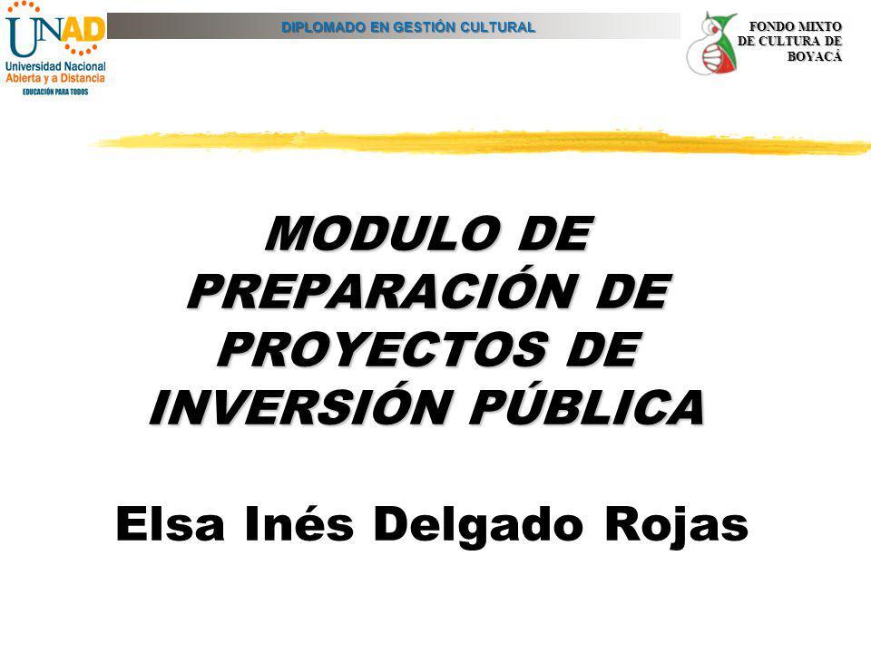 MODULO DE PREPARACIÓN DE PROYECTOS DE INVERSIÓN PÚBLICA Elsa Inés Delgado Rojas