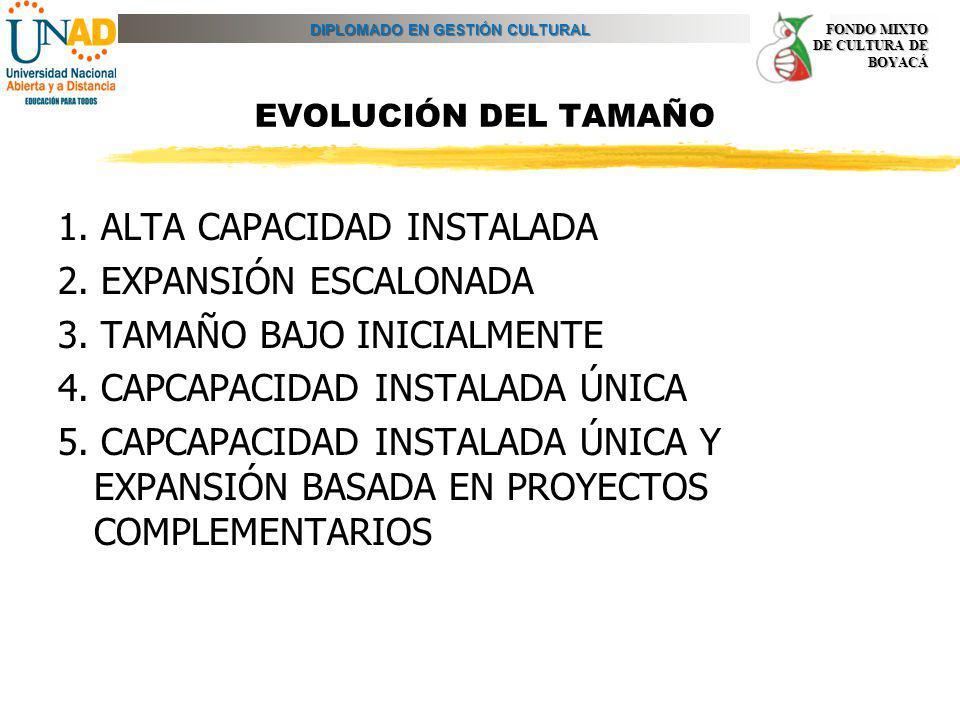 EVOLUCIÓN DEL TAMAÑO 1. ALTA CAPACIDAD INSTALADA