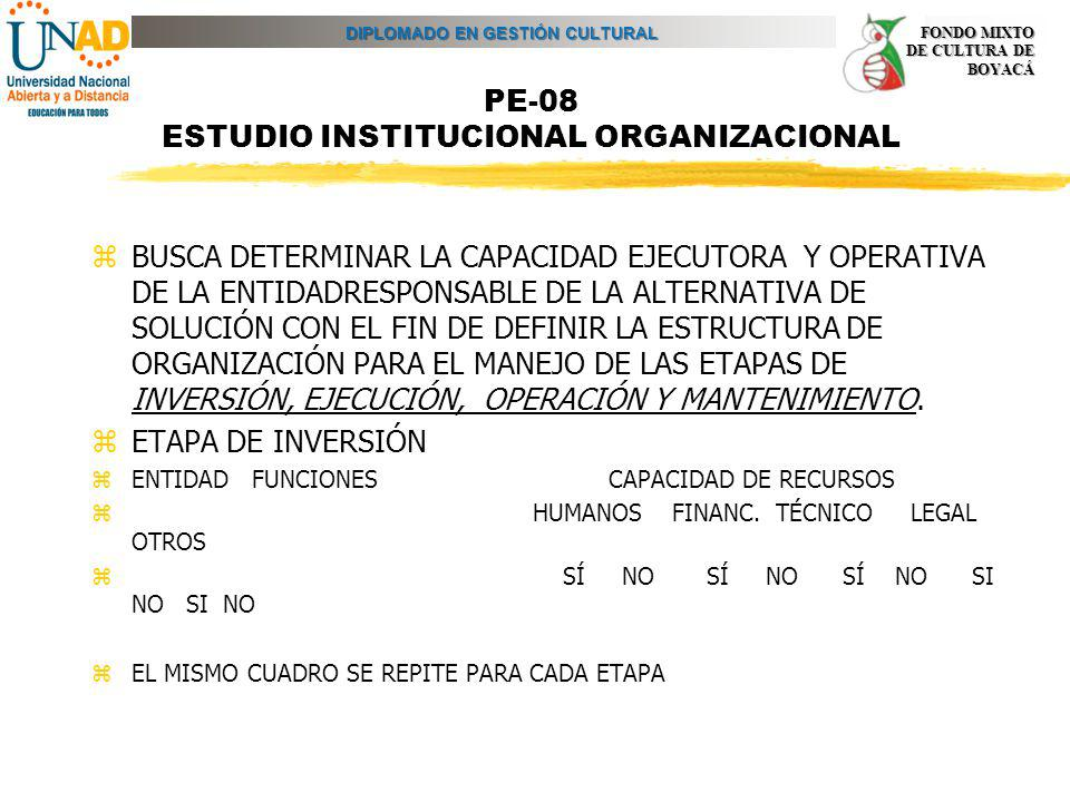 PE-08 ESTUDIO INSTITUCIONAL ORGANIZACIONAL