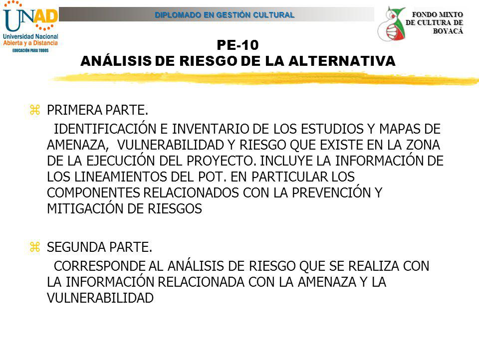PE-10 ANÁLISIS DE RIESGO DE LA ALTERNATIVA
