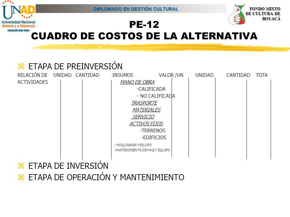 PE-12 CUADRO DE COSTOS DE LA ALTERNATIVA