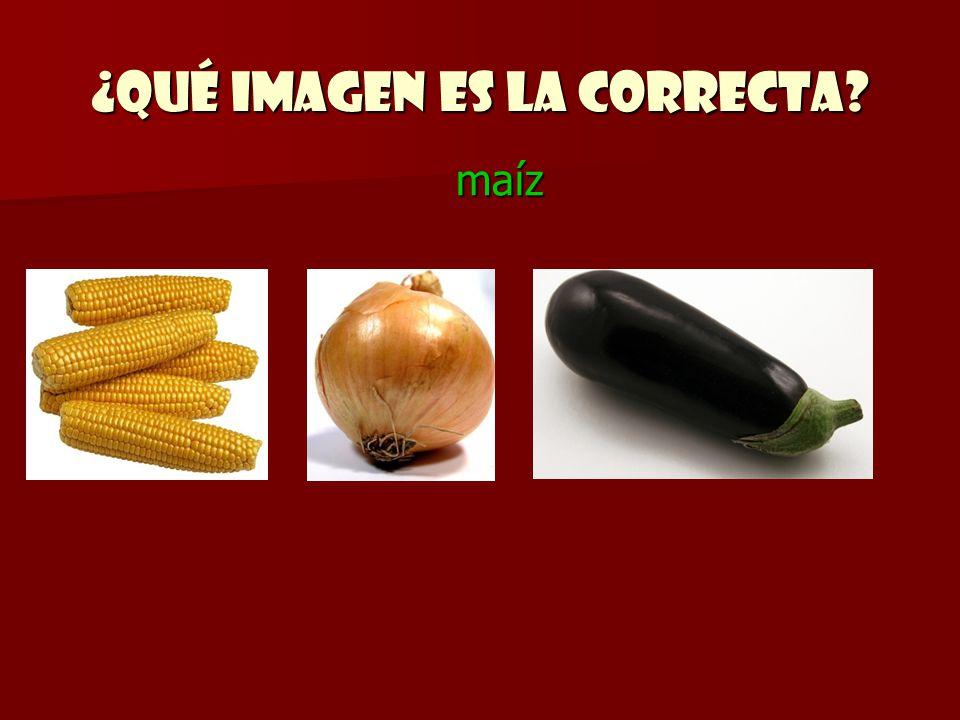 ¿Qué imagen es la correcta