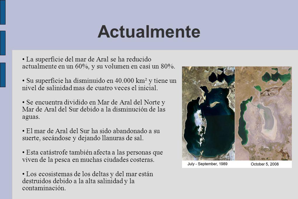 ActualmenteLa superficie del mar de Aral se ha reducido actualmente en un 60%, y su volumen en casi un 80%.
