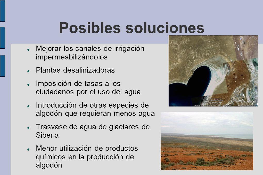 Posibles soluciones Mejorar los canales de irrigación impermeabilizándolos. Plantas desalinizadoras.