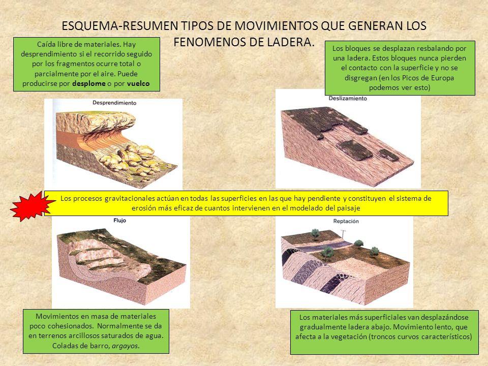 ESQUEMA-RESUMEN TIPOS DE MOVIMIENTOS QUE GENERAN LOS FENOMENOS DE LADERA.