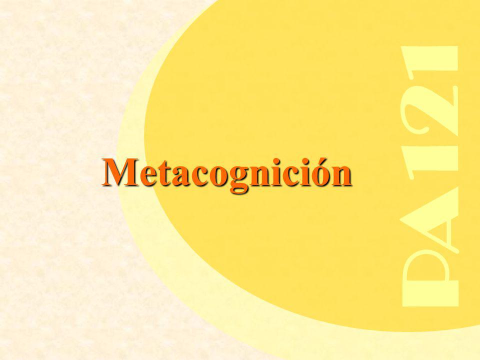 PA121 Metacognición