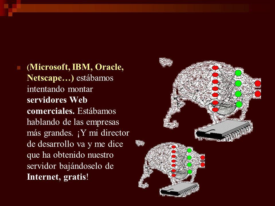 (Microsoft, IBM, Oracle, Netscape…) estábamos intentando montar servidores Web comerciales.