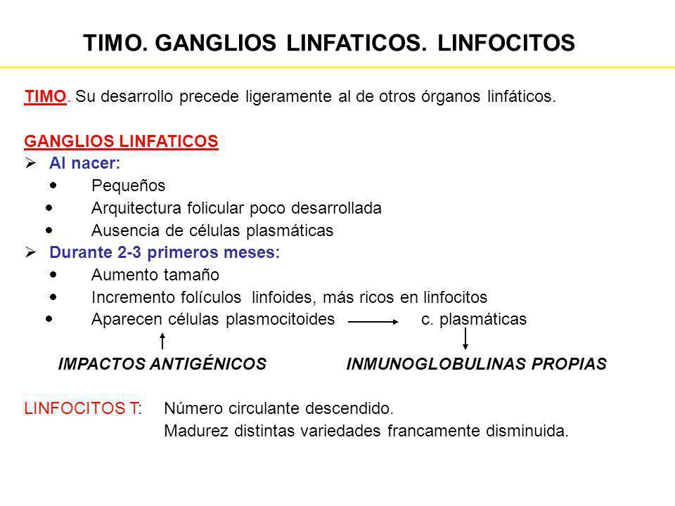 TIMO. GANGLIOS LINFATICOS. LINFOCITOS
