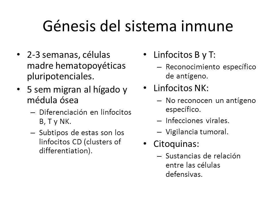 Génesis del sistema inmune