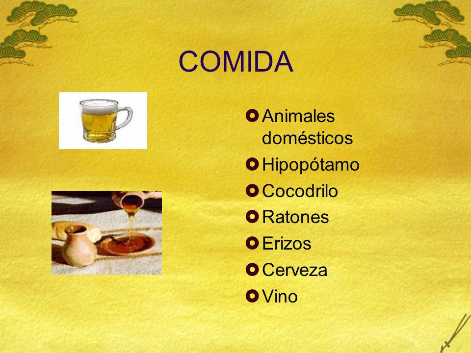 COMIDA Animales domésticos Hipopótamo Cocodrilo Ratones Erizos Cerveza