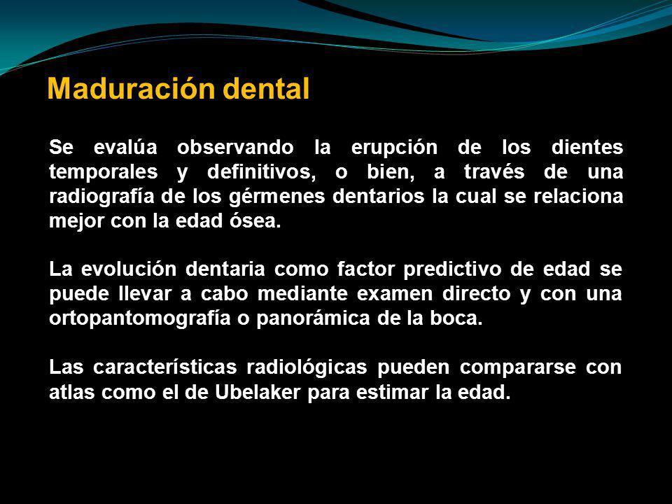 Maduración dental
