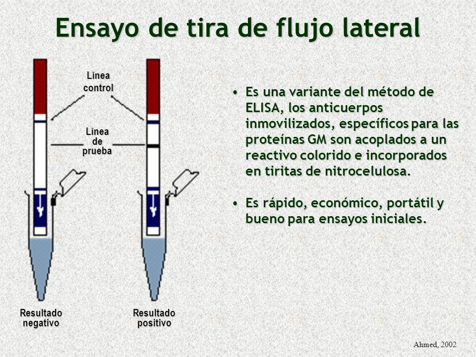 Ensayo de tira de flujo lateral