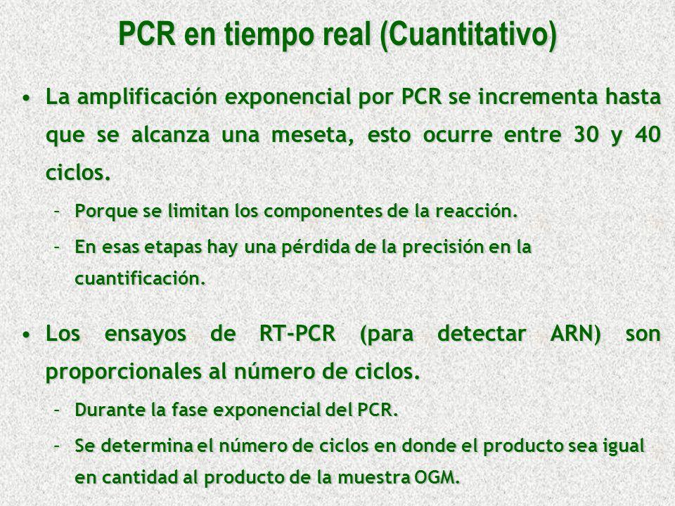 PCR en tiempo real (Cuantitativo)