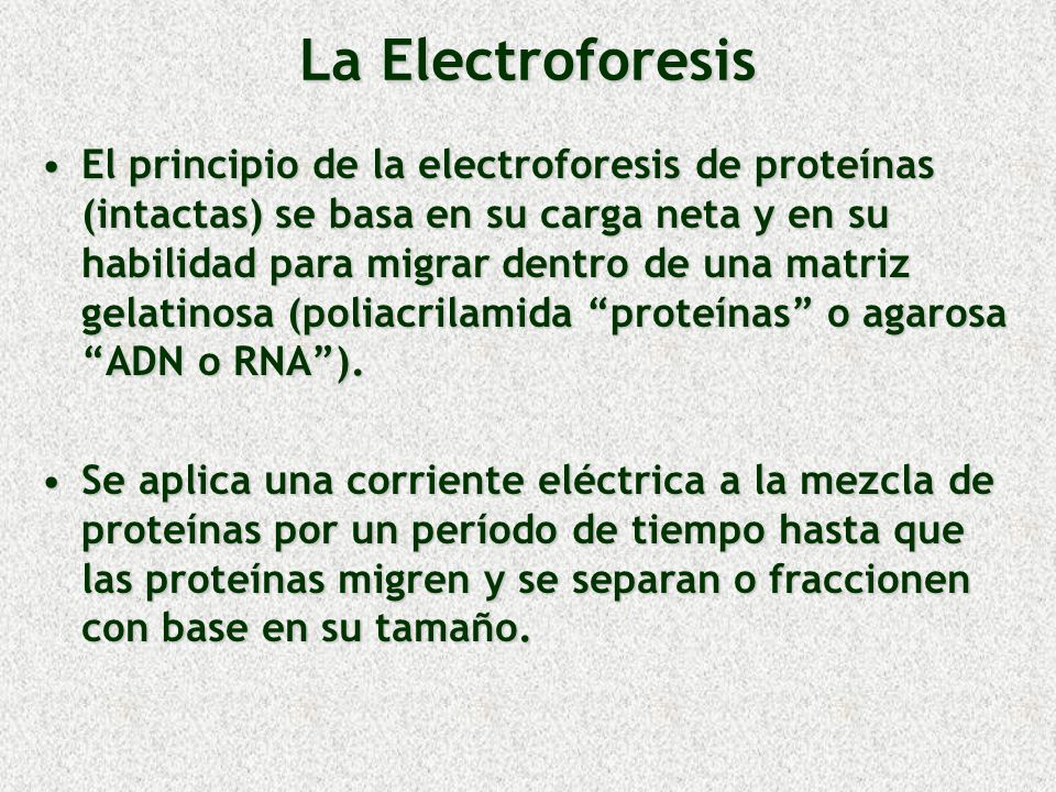 La Electroforesis