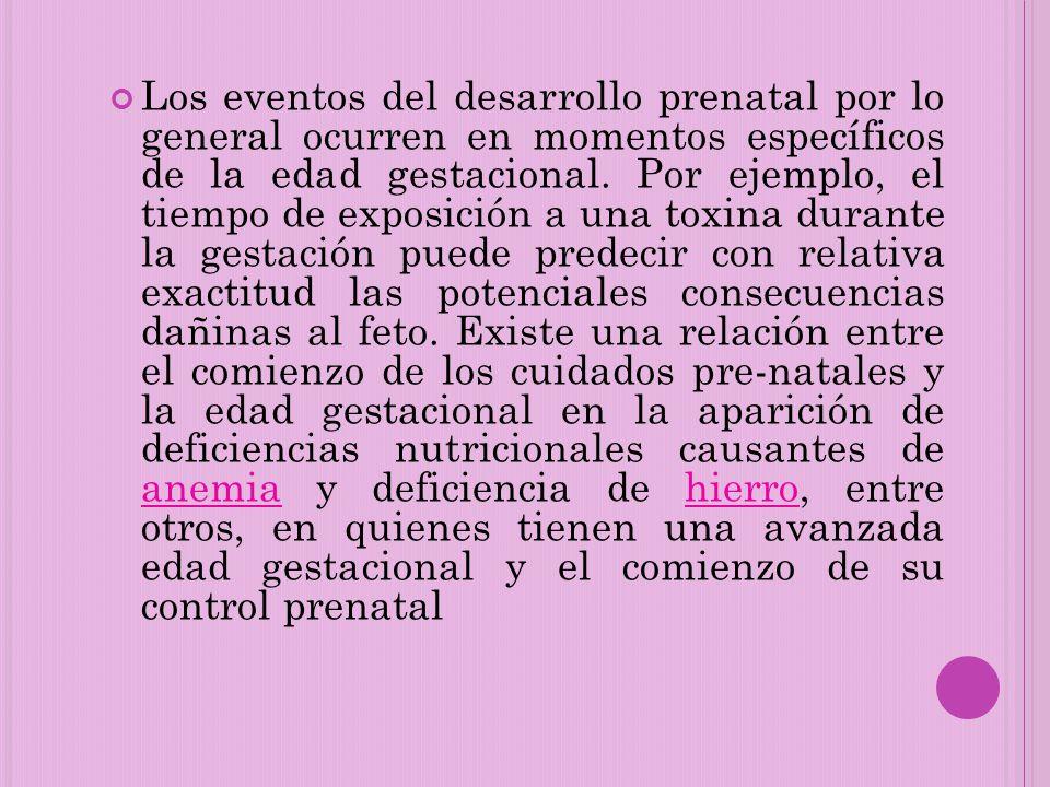 Los eventos del desarrollo prenatal por lo general ocurren en momentos específicos de la edad gestacional.