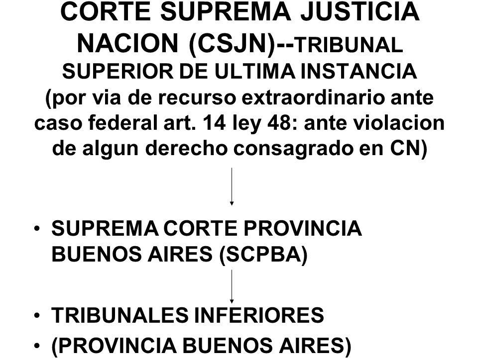 CORTE SUPREMA JUSTICIA NACION (CSJN)--TRIBUNAL SUPERIOR DE ULTIMA INSTANCIA (por via de recurso extraordinario ante caso federal art. 14 ley 48: ante violacion de algun derecho consagrado en CN)