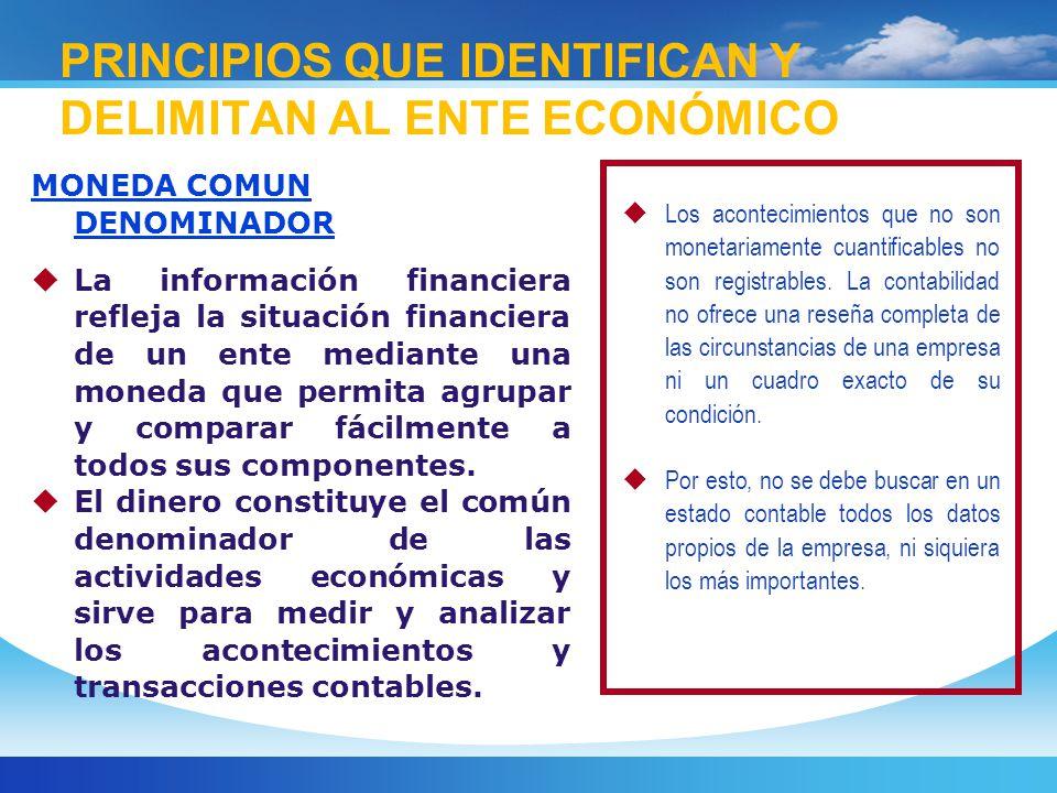 PRINCIPIOS QUE IDENTIFICAN Y DELIMITAN AL ENTE ECONÓMICO