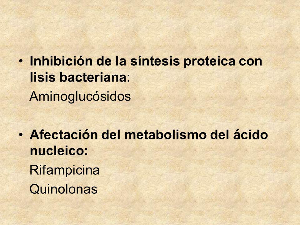 Inhibición de la síntesis proteica con lisis bacteriana: