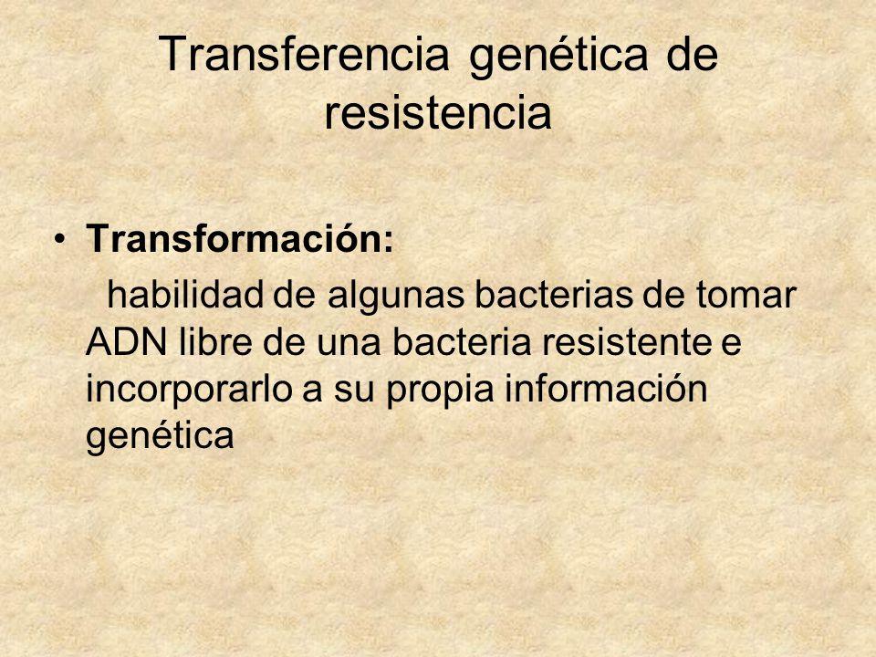Transferencia genética de resistencia