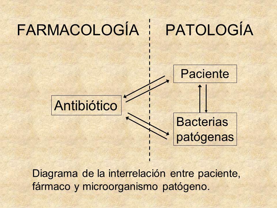 FARMACOLOGÍA PATOLOGÍA