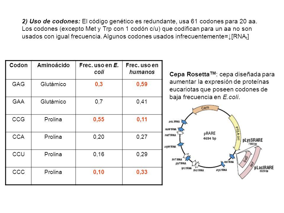 2) Uso de codones: El código genético es redundante, usa 61 codones para 20 aa.