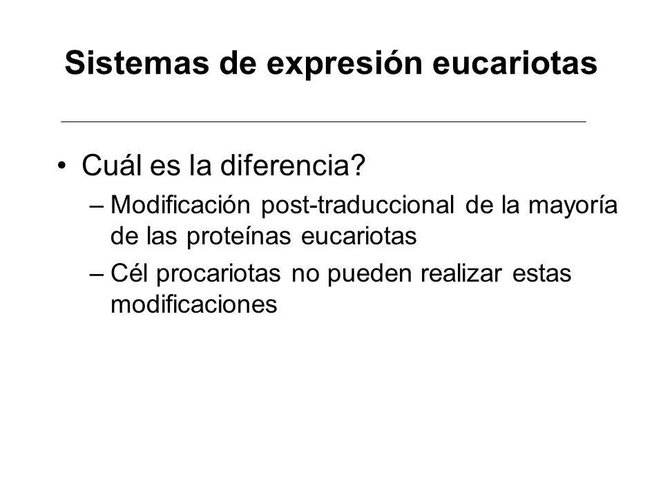 Sistemas de expresión eucariotas